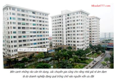 Hiệp hội Bất động sản TPHCM muốn có luật chung cư